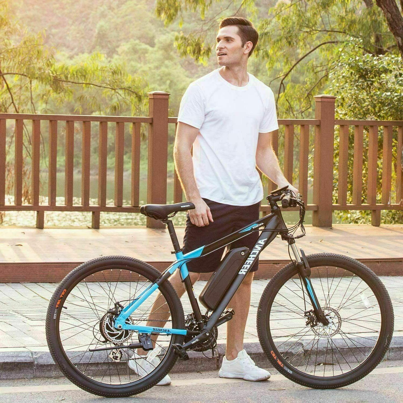 350W Electric Bike 24 Frame Disc Li-Battery E-Bike